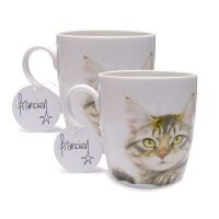 Franciens Katten set van 2 mokken Tabby cat