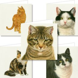 Cats Wallet Greeting Cards-0