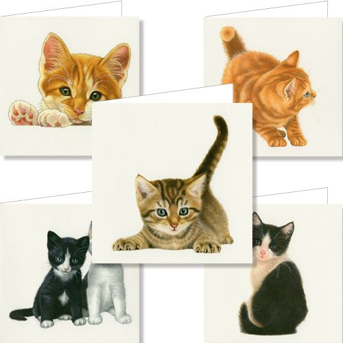 Kittens Wallet Greeting Cards-0