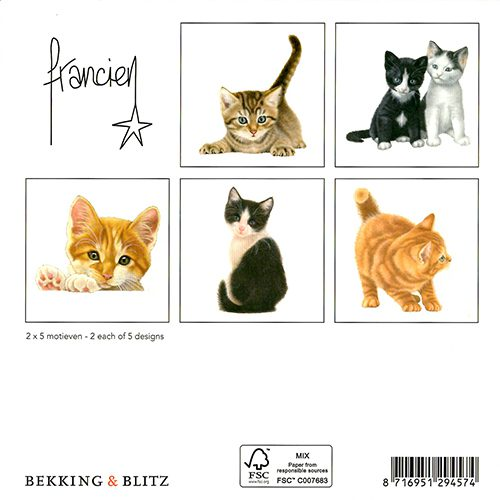 Kittens Wallet Greeting Cards-303