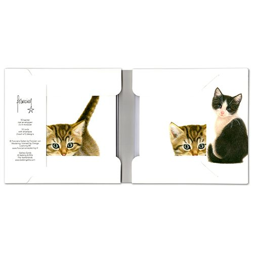 Kittens Wallet Greeting Cards-302
