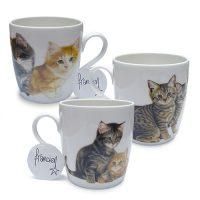 Franciens Katten set van 3 verschillende mokken