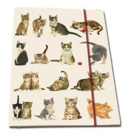 Franciens Katten dossiermappen (2 stuks)