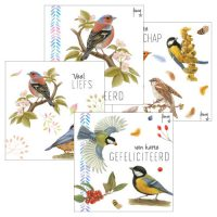 Set Greeting Cards BIRD