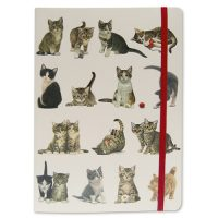 Franciens Cats Address Book