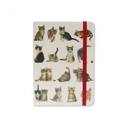 Franciens Katten adresboekje met notitieboekje
