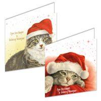 Franciens Cats Christmas Box SANTA HAT