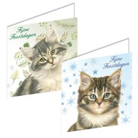 Franciens Cats Christmas Boxje BOSKITTENS WITH DENNETAK AND STARS