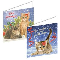 Franciens Cats Christmas Boxje KITTENS WITH Christmas BRANCH AND IN THE SNOW
