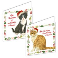Franciens Cats Christmas Box CAT AND KITTEN WITH SANTA HAT IN CHRISTMAS FRAME