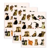 Franciens Katten set van 3 schriften
